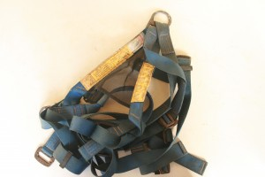 Blog Pict week 6 419 300x200 Harness